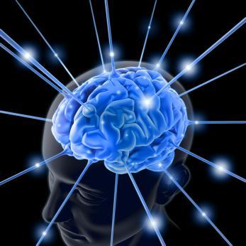 رفتارهاي مخرب مغز (BRAIN DAMAGING HABITS)